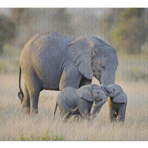 Animal Elephant And Twins Jigsaw Puzzle Set