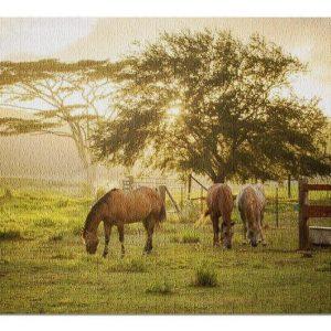 Animal Horses Grazing Jigsaw Puzzle Set